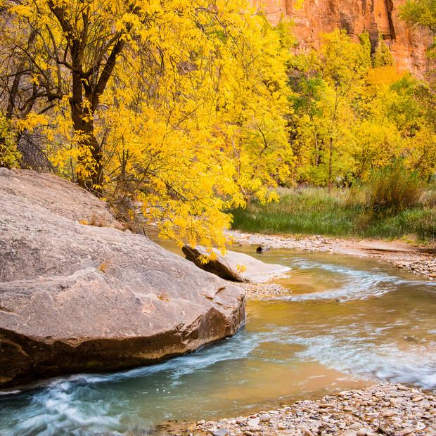Zion Canyon-230.jpg