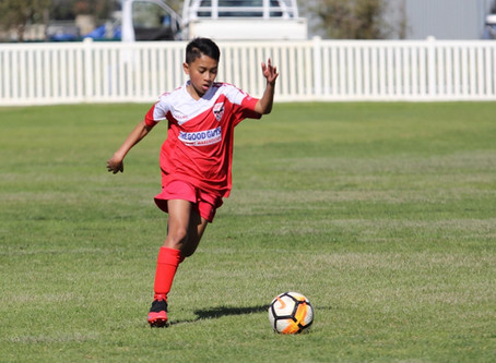 Busselton Terriers demonstrate passing game