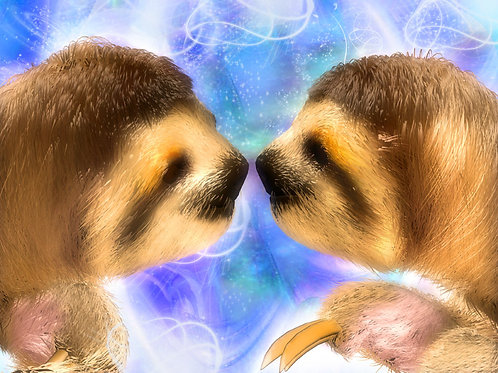 Sloths in Love