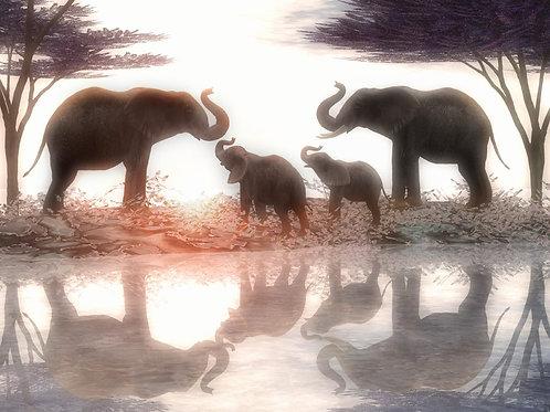 Elephant Family in Harmony