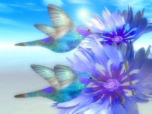 Blue Hummingbirds by the Shore