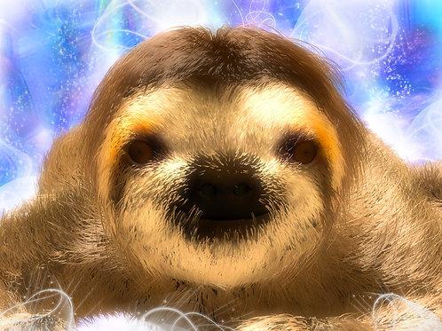 Sloth Delight