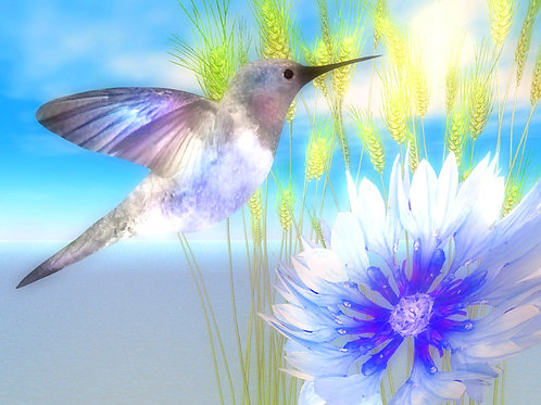 Blue Paradise Hummingbird Dream