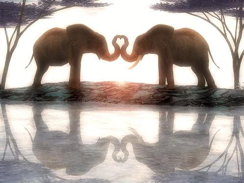 Elephants in Love in Harmony