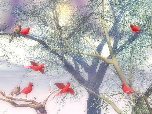 Winter Cardinals Taking Flight