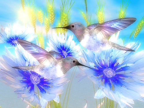 Blue Paradise Hummingbirds and Cornflowers
