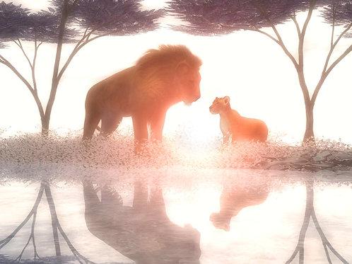 Lion Cub Admire