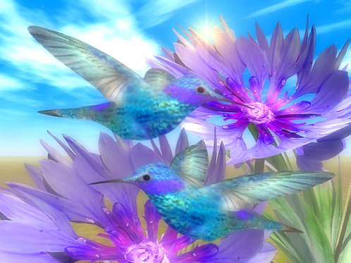 Blue Hummingbirds and Blue Cornflowers