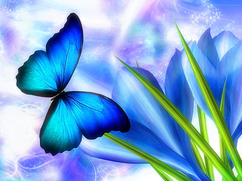 Spring Blue Butterfly