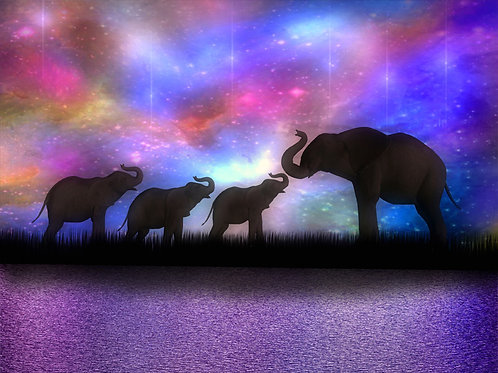 Elephant Baby Trio Starlight