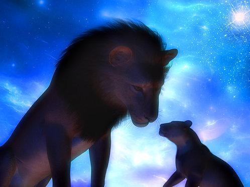 Lion Cub Starlight