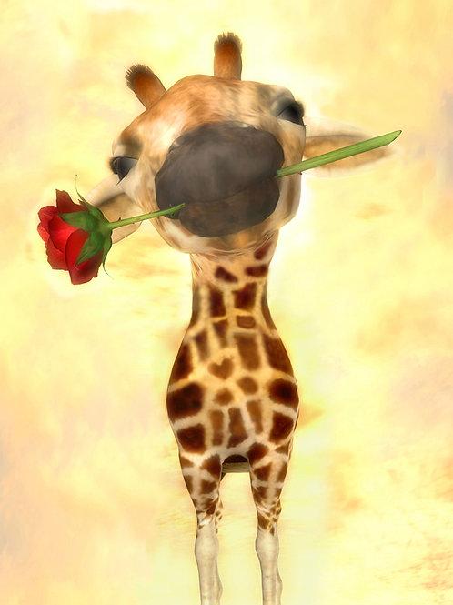Baby Giraffe Giving You a Rose
