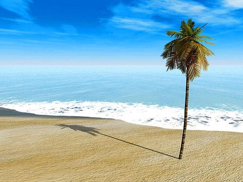 Simple Beach Day