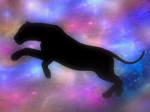 Panther Leap in the Starlight