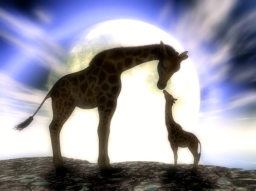 Giraffe Baby Love