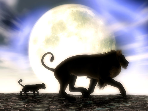 Lion Father and Son Walk in the Moonlight