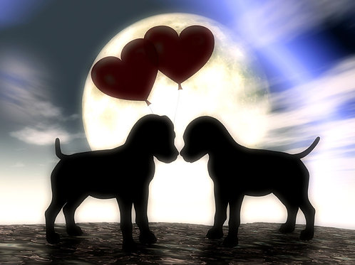 Puppy Love Heart and Soul