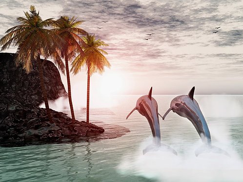 Dolphin Tropical View