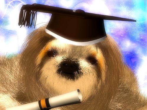 Sloth Grad