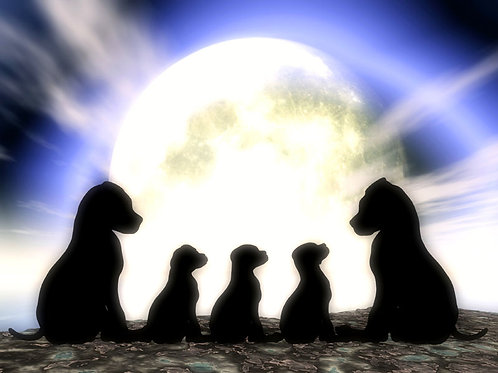 Puppy Family
