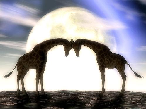 Giraffes in Love in the Moonlight