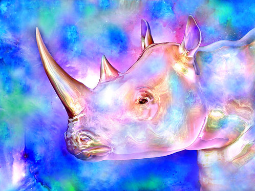 Colorful Rhino