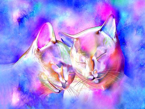 Soul Mate Kitty Moment