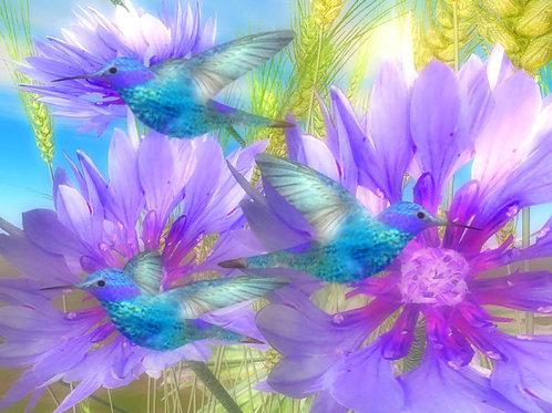 Blue Hummingbird Trio