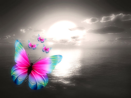 Simple Colorful Butterflies