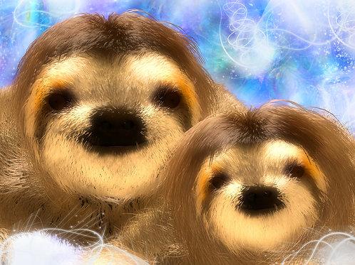 Baby Sloth Admire