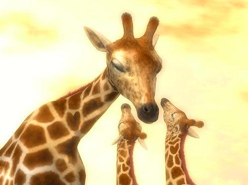 Mother Giraffe's Humble Love