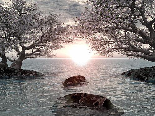 Lakeside Shoreline Dream