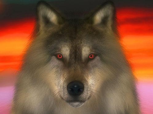 Wolf Winter Twilight
