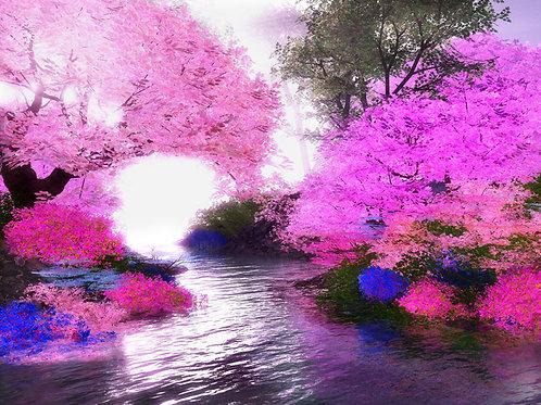 Dreamy Peaceful Sight