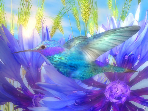 Blue Hummingbird in the Sunshine Dream