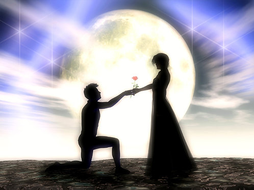 Proposal in the Moonlight