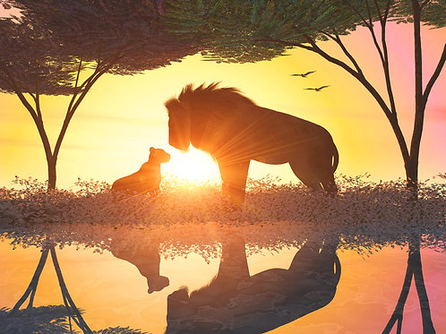 Lion Father and Son at Twilight