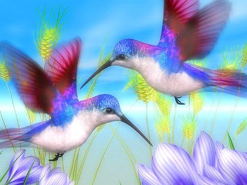 Purple Blue Hummingbirds