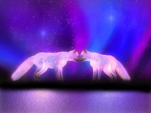 Foxes in the Aurora Borealis