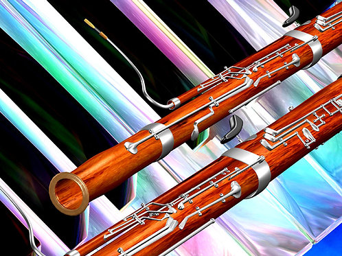 Colorful Bassoon
