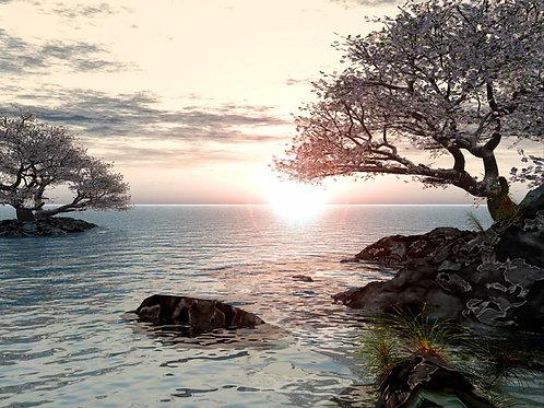 Dreamy Shoreline Fantasy