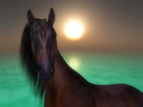 Horse by the Sea