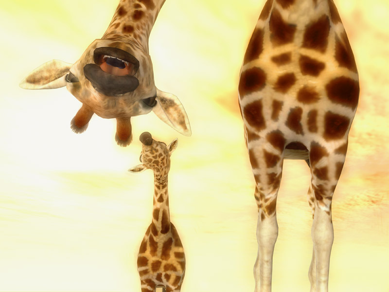 GiraffeParentSayingHi800