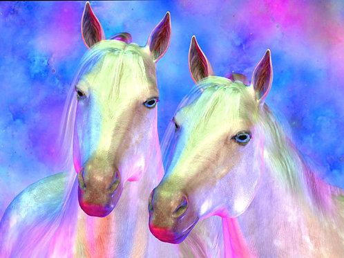 Enchanting Horses