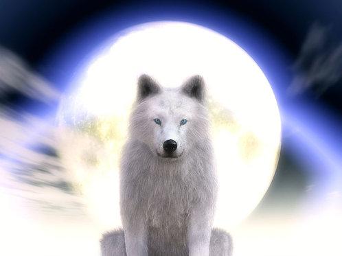 Wolf Mystique Dream