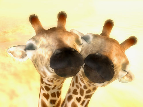 Giraffe Forever Love