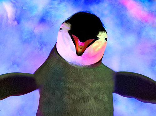 Baby Penguin Hug