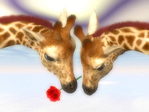 Giraffe Eternal Romance