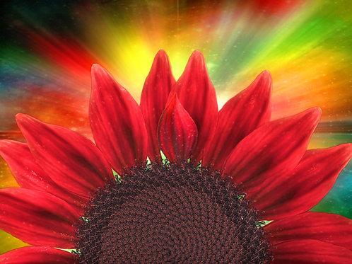 Flower Child in Red