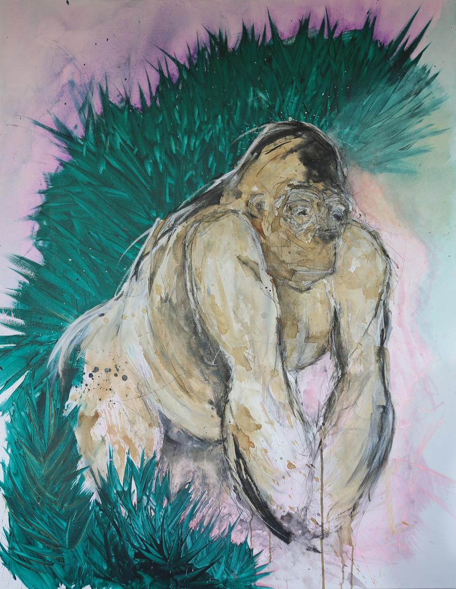 Gorilla  146x114 cm